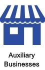 Auxiliary Biz's